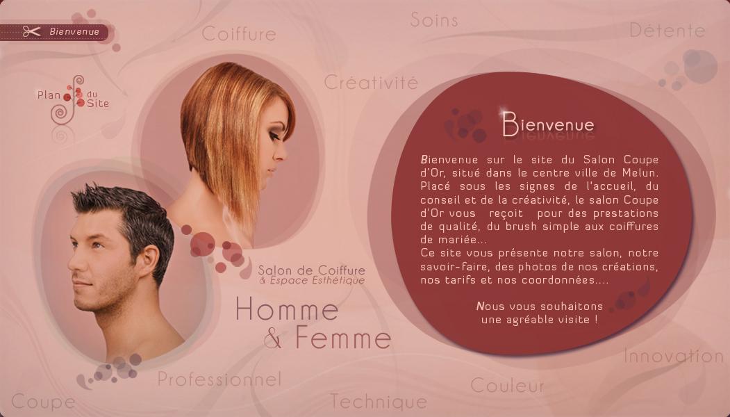 Coupe d 39 or salon de coiffure esth tique melun for Salon de coiffure melun